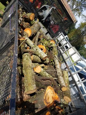 Free Wood for Sale in Kent, WA