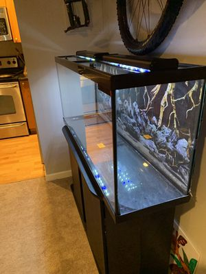 New And Used Fish Tanks For Sale Offerup