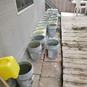 5 Gallon Used Buckets/ Cubetas usadas de 5 gallones for Sale in Miami, FL