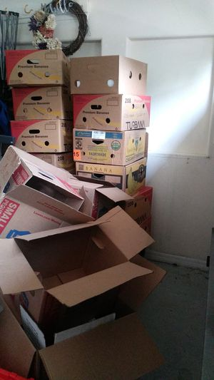 Free Moving Boxes!!! for Sale in Winter Springs, FL
