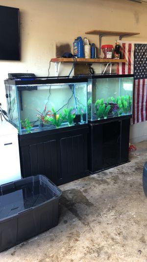 55 gallon aquarium and stand for Sale in Elk Grove, CA