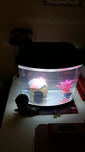 2.5 gallon fish tank for Sale in Boston, MA