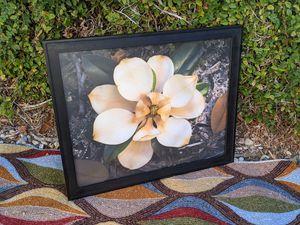 Fine art photography, framed art, magnolia bloom for Sale in Upland, CA