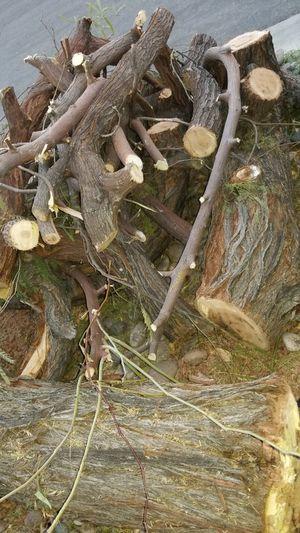 Free wood for Sale in Las Vegas, NV