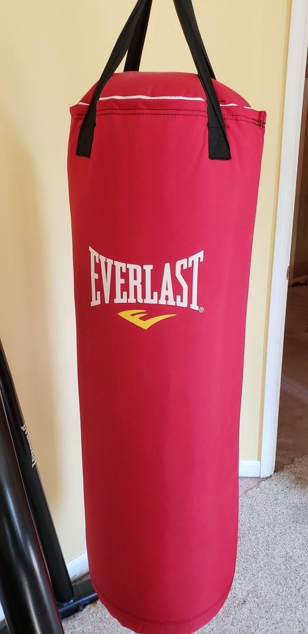 Everlast 70lb Punching Bag, Speed Bag, Gloves, and Stand