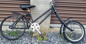 Custom Bicycle for Sale in Lewisburg, PA
