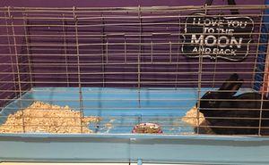 Rabbit Cage for Sale in La Habra, CA
