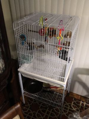 Excellent, and big wide cage, for Bird, 🦅, parrot, you named, for Sale in Boston, MA