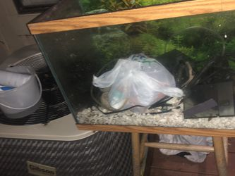 50 Gal Aquarium With Everything You Need, 2 Filters And Heater for Sale in Reston,  VA