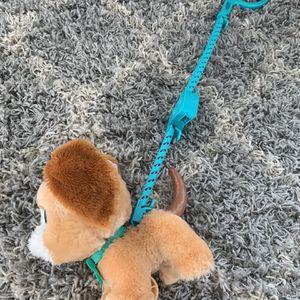 Kids Walking Puppy for Sale in Laurel, MD
