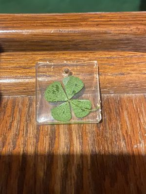 Real four leaf clover necklace or keychain for Sale in Pueblo, CO