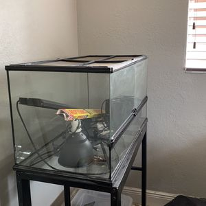 Exo Terra Terrarium 36x18x18 Stand And All Extras for Sale in Fort Lauderdale, FL