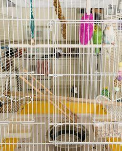 Parakeet Budgie Bird Cage for Sale in Avondale,  AZ