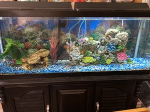 50 Gallon Aquarium with everything for Sale in Baxley, GA