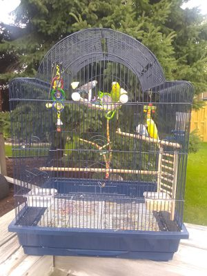 SUNDAY SPECIAL... BIG CAGE PLUS 4 COLORFUL PARAKEETS....ALL TOYS AND ACCESSORIES INCLUDED 😀 for Sale in Melrose Park, IL