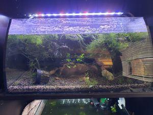 hygger Horizon 8 Gallon LED Glass Aquarium for Sale in San Bernardino, CA