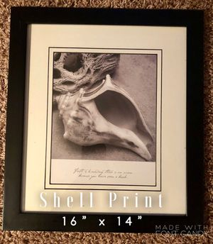 Shell Wall Art Print Decor Black Frame for Sale in Maple Grove, MN