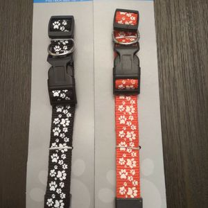 Printed Dog Collars for Sale in Lake City, FL