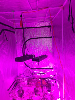 Grow tent for Sale in Ontario, CA
