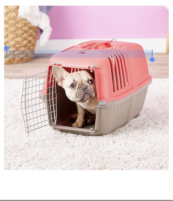 MidWest Spree Plastic Dog & Cat Kennel, Red, 22-in