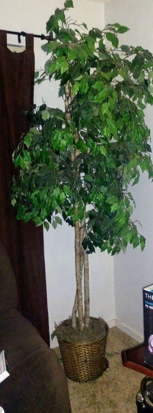 Tall decorative fake plant for Sale in Visalia, CA