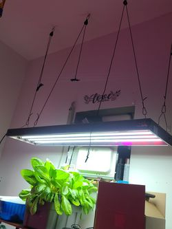 Agrobrite FLUORECENT GROW LIGHT for Sale in The Bronx,  NY
