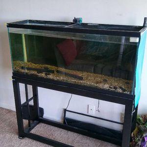 50 gallons aquarium for Sale in Seaside, CA