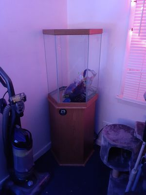 35 gallon hexagon aquarium and stand for Sale in Berwyn, IL