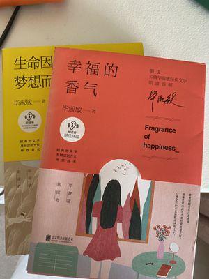 Chinese Novel by Shumin Bi for Sale in Alexandria, VA