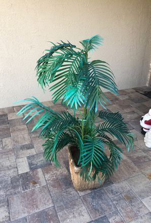 Fake plant for Sale in Clearwater, FL