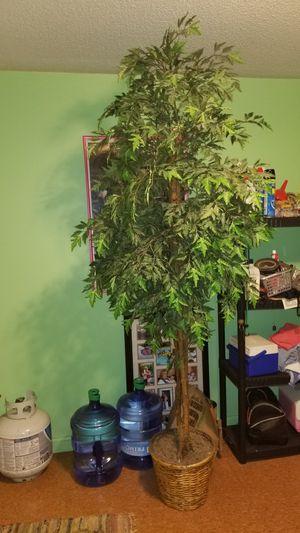 Indoor decoative tree for Sale in Davenport, IA