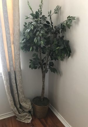 Tree with basket for Sale in Dallas, TX