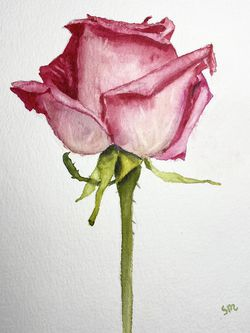 """Original Watercolor Art Rose 5x7"""" with 8x10 Mat for Sale in Los Angeles,  CA"""