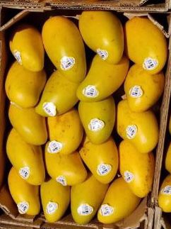 Xtra Sweet yellow mango box for Sale in Houston, TX