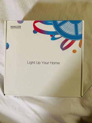 Minger light for Sale in MD, US