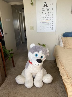 Huge Husky Stuffed Animal/Plushie for Sale in San Diego, CA