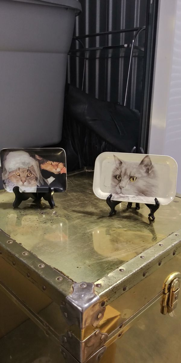 Cat Tins on easels