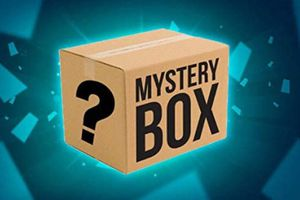 Mystery Box for Sale in Natick, MA