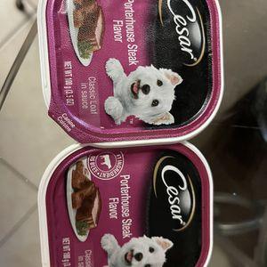 Cesars Dog Food for Sale in Tampa, FL