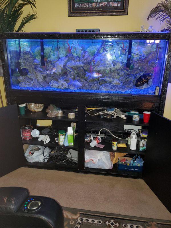 Aquarium custom built cabinet.