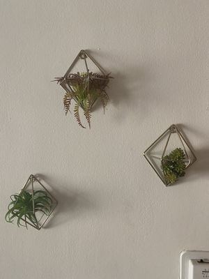 Metal Silver Geometric Wall Plant Set (3 for $15) for Sale in Los Angeles, CA