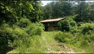 Home and 69 1/2 acres for Sale in STNDG STONE, WV