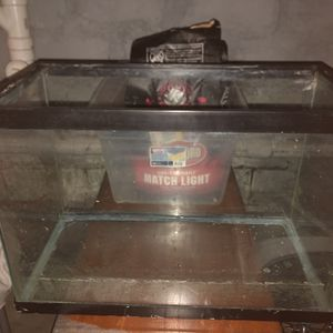 Fish Or Turtle Tank for Sale in Milton, MA