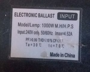 Lightspeed Digital 1000W Ballast for Sale in Sacramento, CA