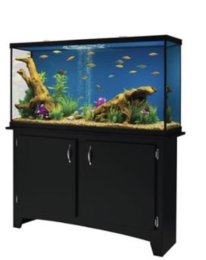 55 Gallon fish tank with stand for Sale in Houston, TX