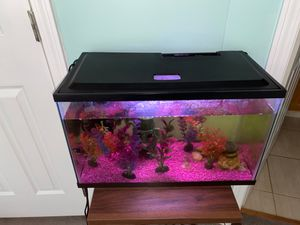 Aqua Culture 20 gallon aquarium tank for Sale in Roselle, IL