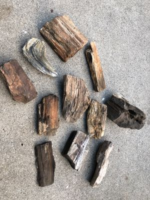 Natural, unpolished Petrified Wood Pieces and a large collection of natural agate rocks, crystals etc for Sale in Woodland Hills, CA