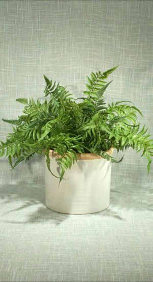 """Ceramic Vase with Artificial Plant 15""""x15"""" *PICKUP ONLY* home decor, household, flowers for Sale in Mesa, AZ"""