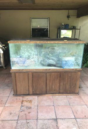 aquarium for Sale in Plant City, FL