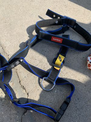 Dog items- harness for large dog, collars and muzzle for Sale in Los Angeles, CA